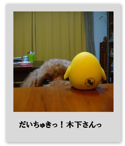 f0153479_1434897.jpg