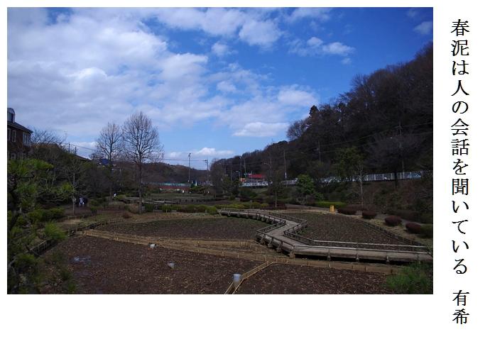 薬師池公園_a0248481_23192947.jpg