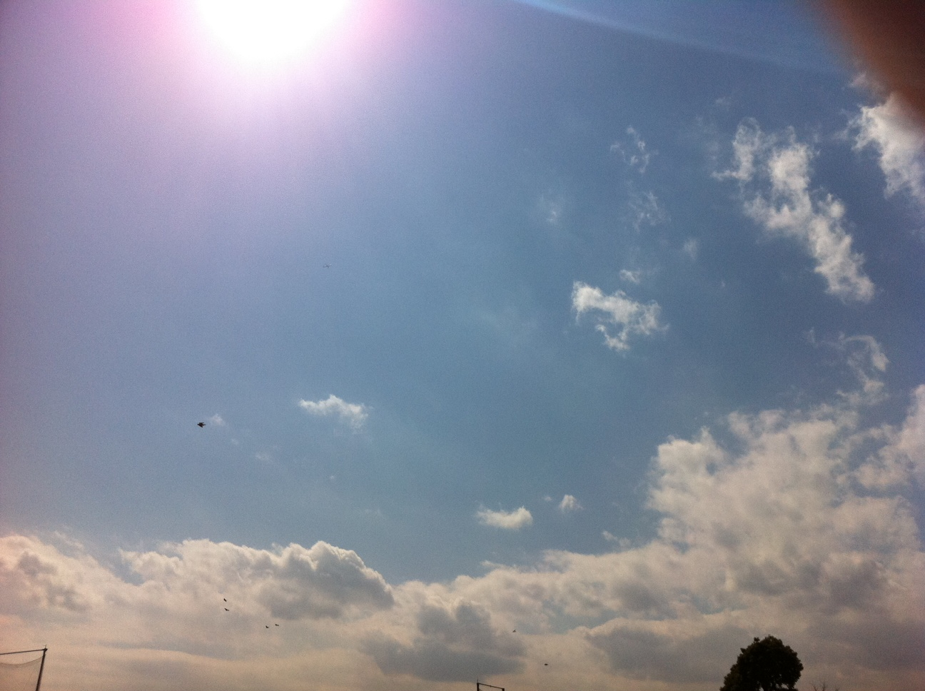 空と海のブルー。僕の命の原点「ふるはま公園。」②_a0112393_158711.jpg
