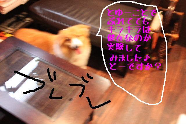 b0130018_20271026.jpg