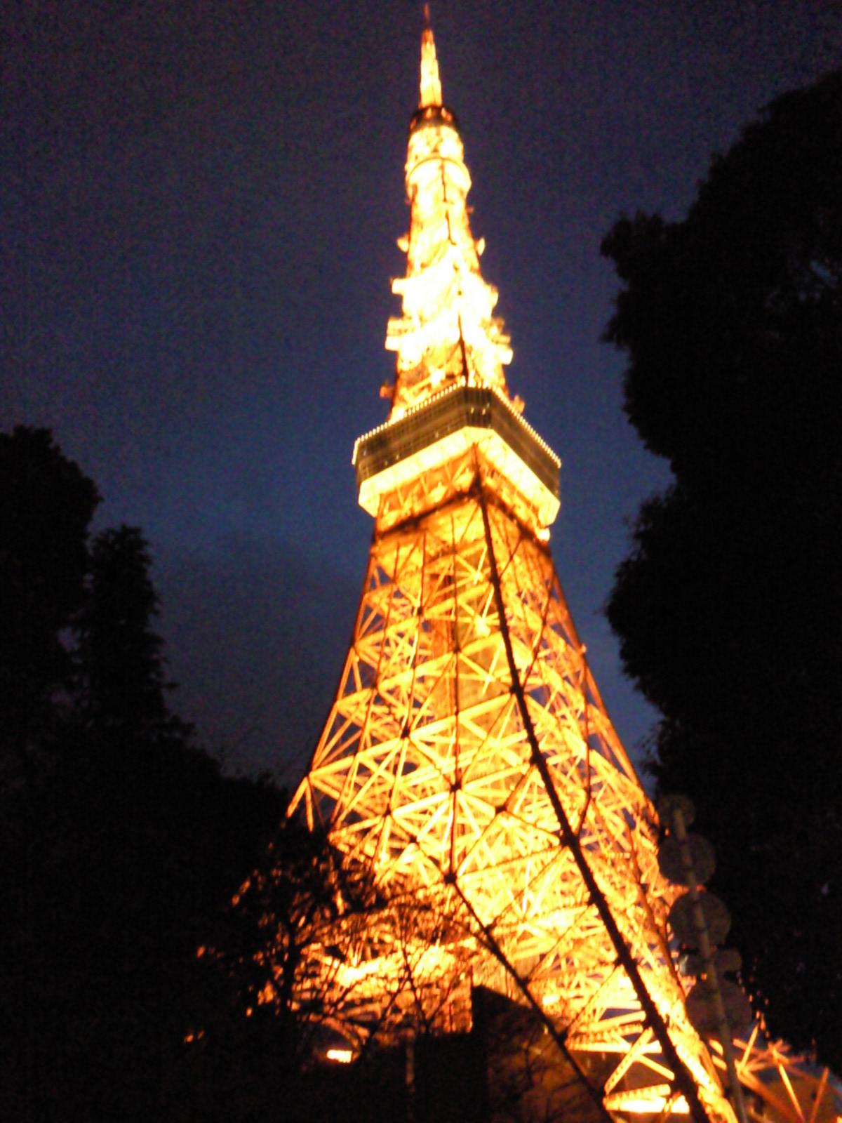 嵐カラーの東京タワー_e0237625_2210229.jpg