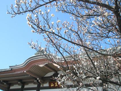 名古屋・覚王山_a0099744_12171984.jpg