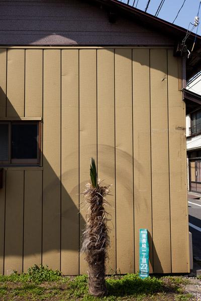 2012/03/16 椎名町界隈_b0171364_9473080.jpg