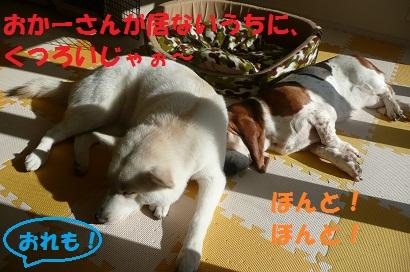 f0121712_9475117.jpg