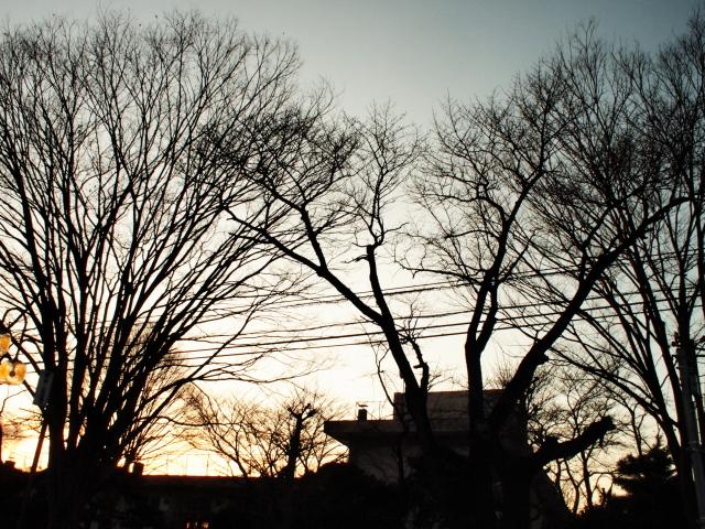 逆光の夕焼けドラマチック