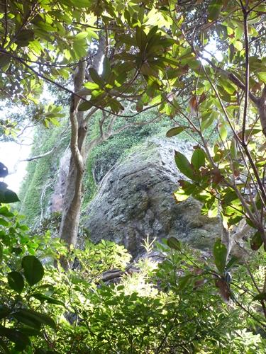 楯崎神社(1)半島の絶壁に立つ巨大な磐座に神功皇后は祈った_c0222861_103433100.jpg