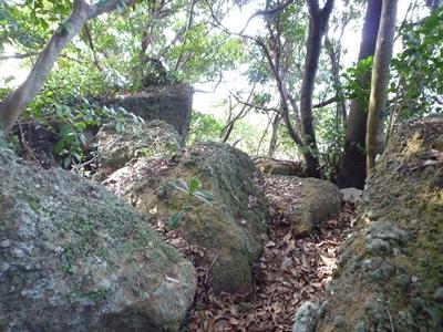 楯崎神社(1)半島の絶壁に立つ巨大な磐座に神功皇后は祈った_c0222861_1035930.jpg
