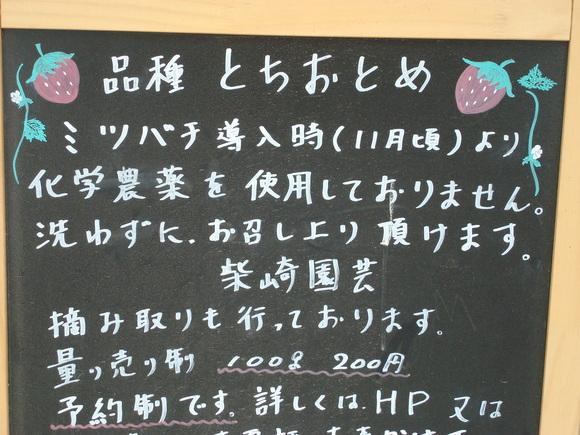イチゴ狩り_a0186568_2138662.jpg