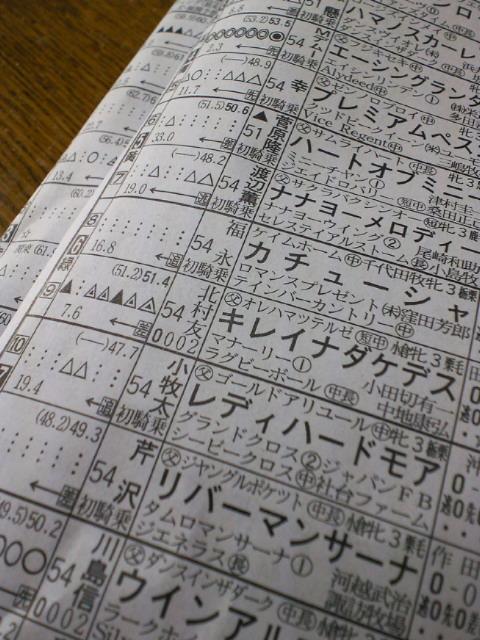 今日の阪神1レース_c0001670_14215969.jpg