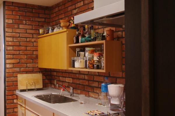 新居の改造したミニキッチン_a0074540_10392190.jpg