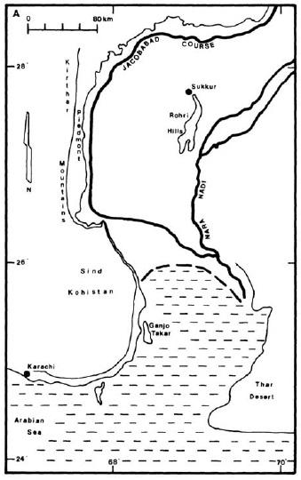 PJAM2012#6 シンド州北部におけるインダス川の水利_a0186568_19511879.jpg