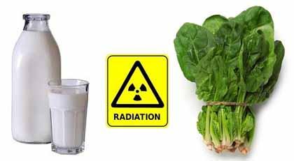 放射性瓦礫:放射性物質はカルタゴの塩 + 「がれき移動は危険」 チェルノブイリ研究者が懸念_c0139575_1613370.jpg