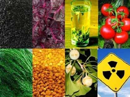 放射性瓦礫:放射性物質はカルタゴの塩 + 「がれき移動は危険」 チェルノブイリ研究者が懸念_c0139575_161872.jpg