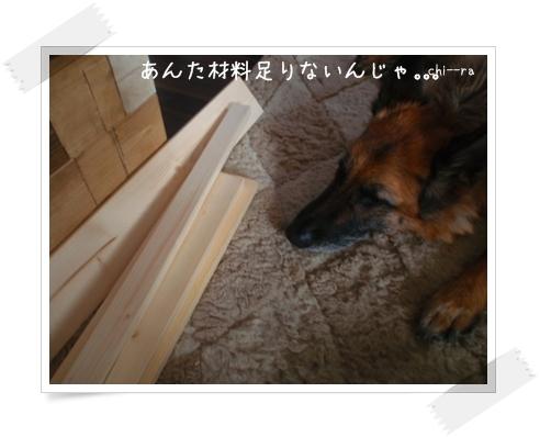 b0198925_1203841.jpg