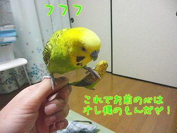 f0196665_22214919.jpg