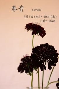 c0173697_14211422.jpg