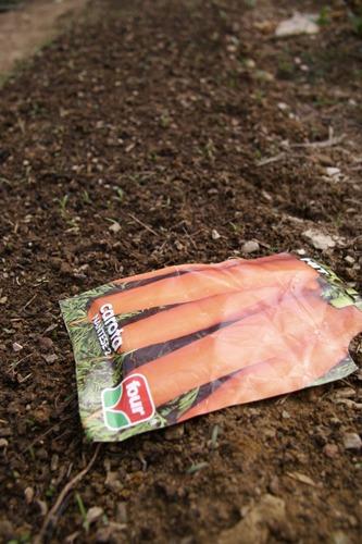 ニンジンの種蒔きは丁寧に丁寧に~3月の畑_f0106597_224857.jpg
