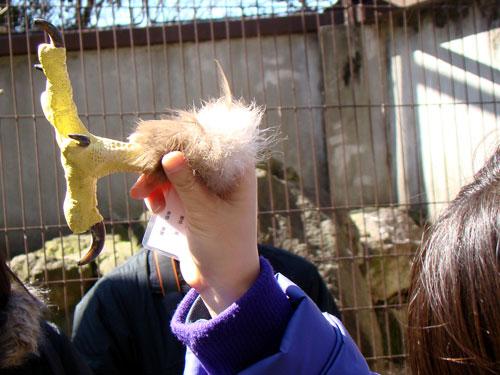 上野動物園2_a0047200_1035270.jpg