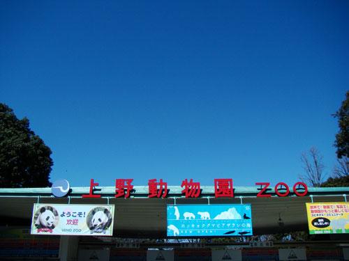 上野動物園1、パンダちゃん_a0047200_9302851.jpg