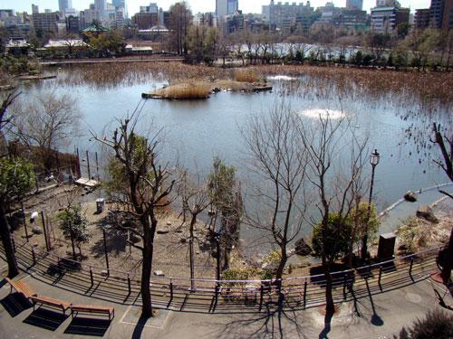 上野動物園1、パンダちゃん_a0047200_9333076.jpg