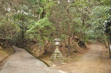 「物理の森の中で道が二つに分かれていた」:「バック・ツー・ザ・フューチャー」_e0171614_1604253.jpg