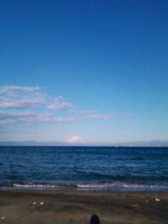 秋谷海岸_d0150720_10103368.jpg