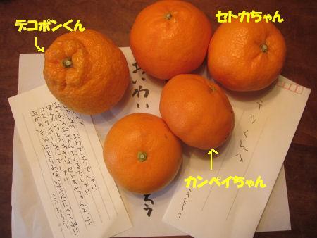 f0143123_2081963.jpg