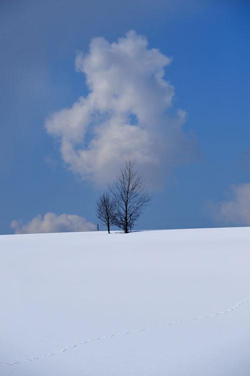 f0116528_2010736.jpg