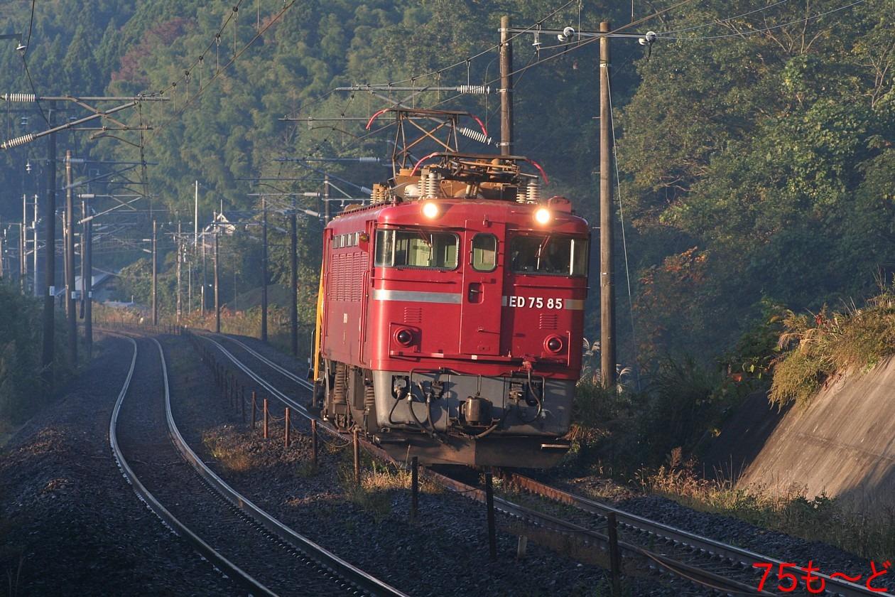 b0085336_20124495.jpg