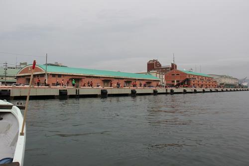 清水港解放釣りフェスタ第3回_f0175450_1522178.jpg