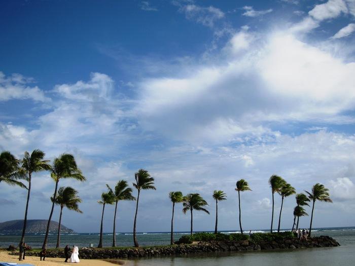 2011冬旅☆ハワイ ~4日目 ザ カハラホテル&リゾート~_e0232054_054336.jpg