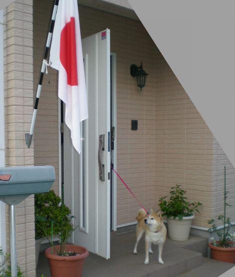 2012年3月20日(火)愛ちゃんと心ちゃん劇場!初期編①_f0060461_12303911.jpg