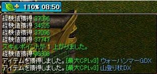 d0174864_534302.jpg