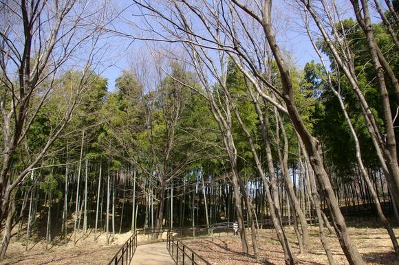 横浜市歴史博物館と大塚・歳勝土遺跡公園_a0186568_21103252.jpg