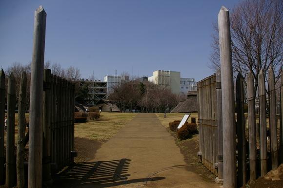 横浜市歴史博物館と大塚・歳勝土遺跡公園_a0186568_211476.jpg