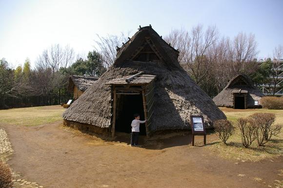 横浜市歴史博物館と大塚・歳勝土遺跡公園_a0186568_2116376.jpg