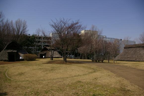 横浜市歴史博物館と大塚・歳勝土遺跡公園_a0186568_2125577.jpg