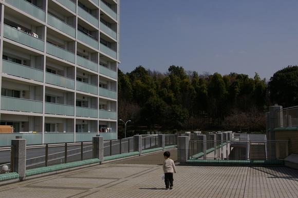 横浜市歴史博物館と大塚・歳勝土遺跡公園_a0186568_2172896.jpg