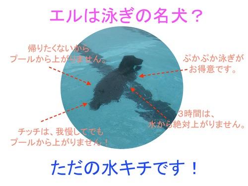 c0238473_10522666.jpg