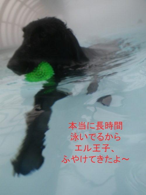 c0238473_1203499.jpg