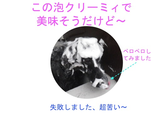 c0238473_13392159.jpg