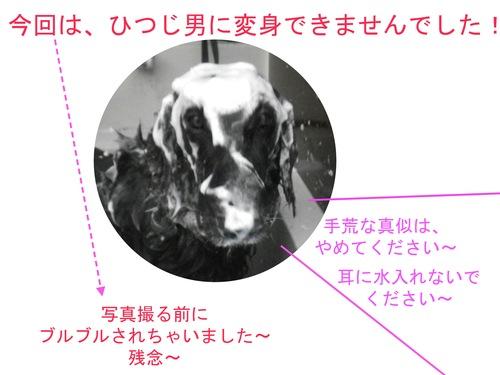 c0238473_13404570.jpg