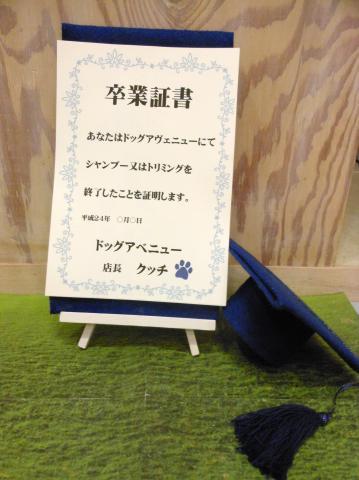 卒業_b0186183_1825281.jpg