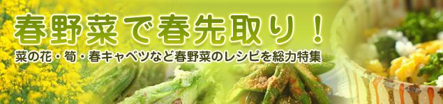 朝日放送「おはよう朝日です」で春野菜レシピが紹介されました!_a0115906_723333.jpg