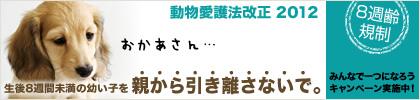 b0138430_13453298.jpg