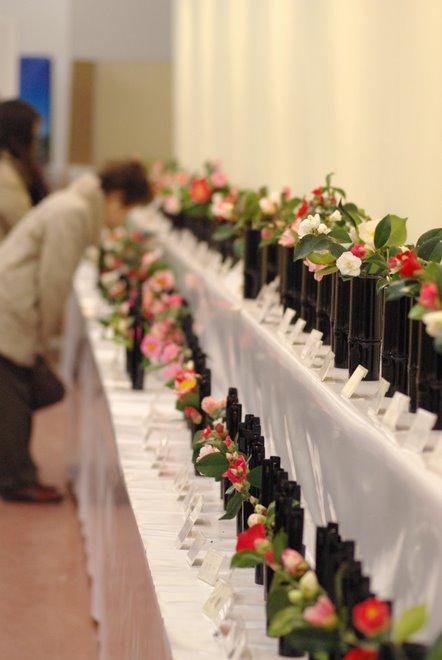 梅と椿が香る名古屋城 椿展_e0171336_10565396.jpg