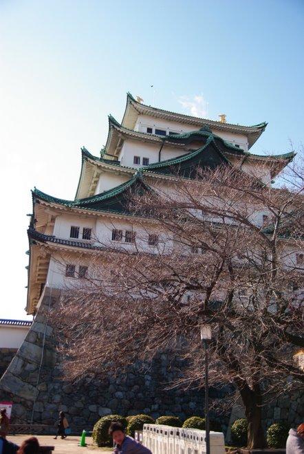 梅と椿が香る名古屋城 椿展_e0171336_12113976.jpg