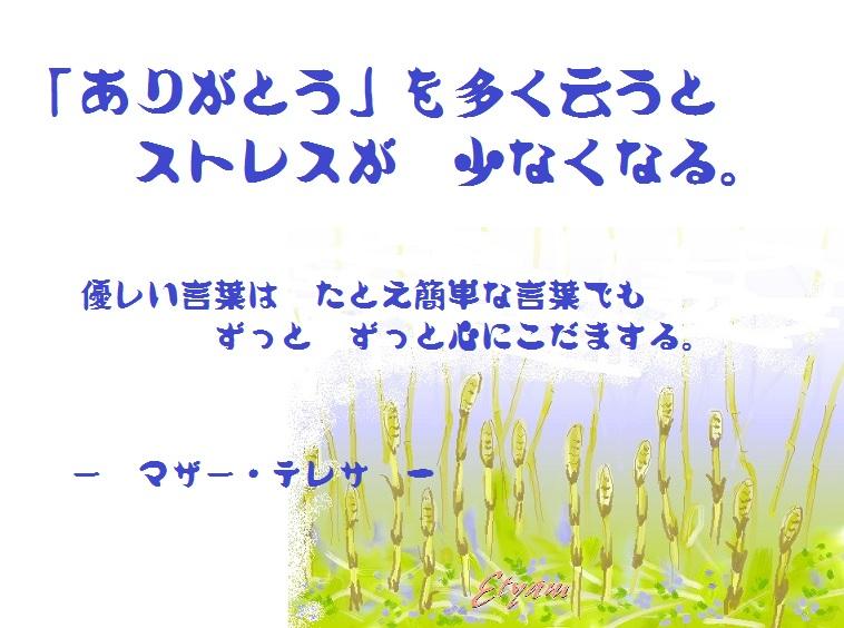 d0083472_1753163.jpg