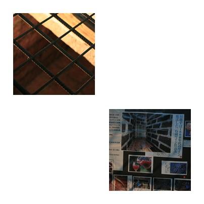 d0113182_18175875.jpg