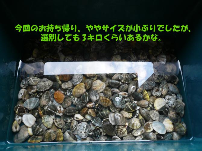 f0183484_1912516.jpg